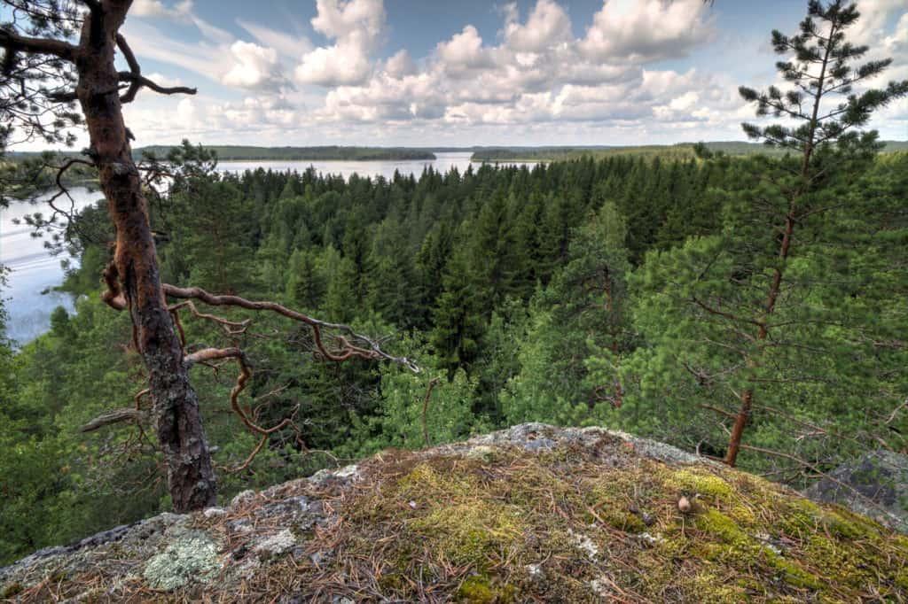 Hiirettelänvuoren laelta avautuvassa maisemassa taivas kohtaa Kymijoen.